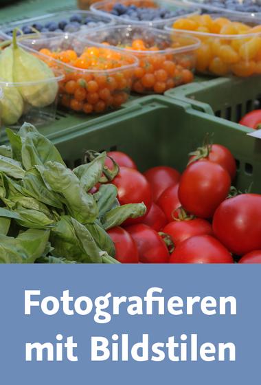 download Video2Brain.Fotografieren.mit.Bildstilen.GERMAN-PANTHEON