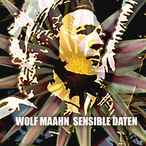 Wolf MaahnsSensible Daten (2015)