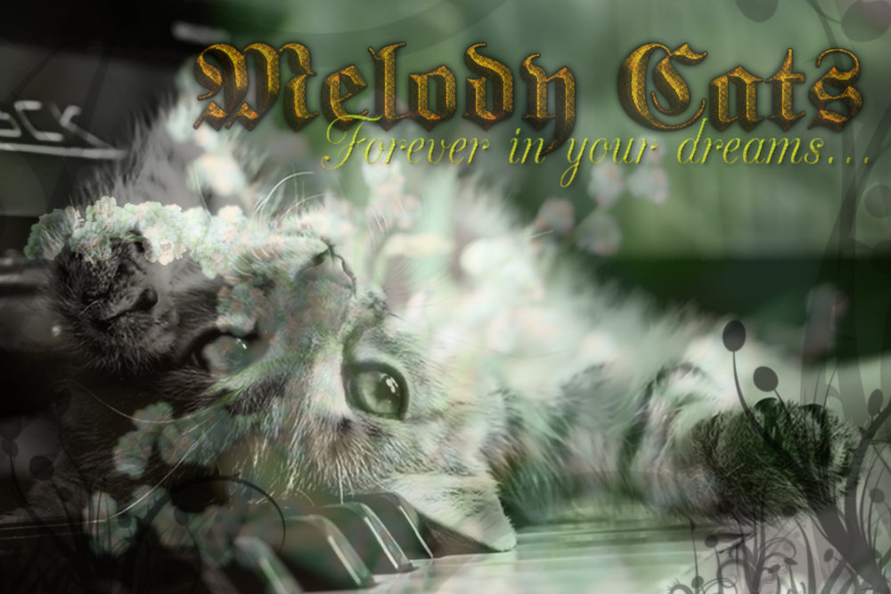 Melody Cats