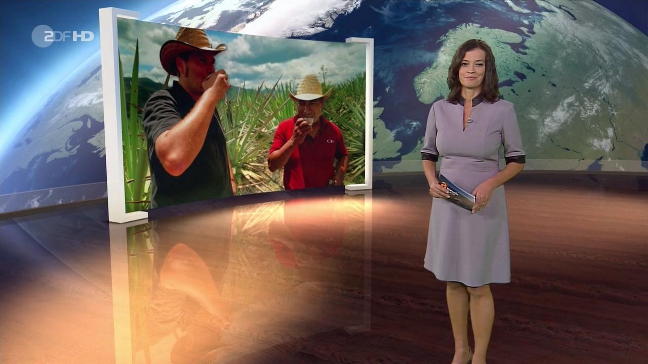 Antje pieper zdf ZDF Antje