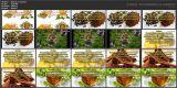 Полезные и вкусные добавки в чай (2015/WebRip)