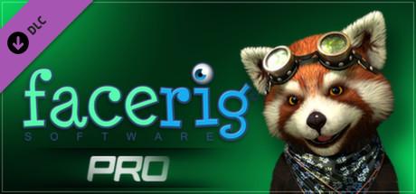 download FACERIG.PRO.V1.733-MAGNiTUDE