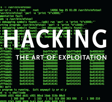 an analysis of the art of hacking