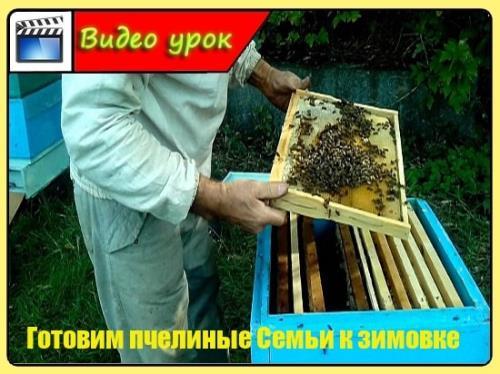Готовим пчелиные Семьи к зимовке (2015/WebRip)