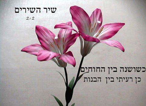 Biblijski citati i pjesme Jo57pxft