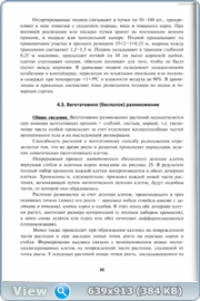 http://fs5.directupload.net/images/160112/84pufeoq.png
