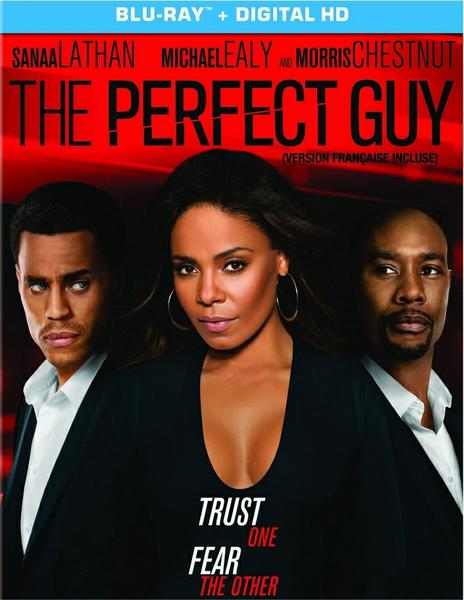 download The.Perfect.Guy.2015.German.AC3.Dubbed.DL.720p.BluRay.x264-MULTiPLEX