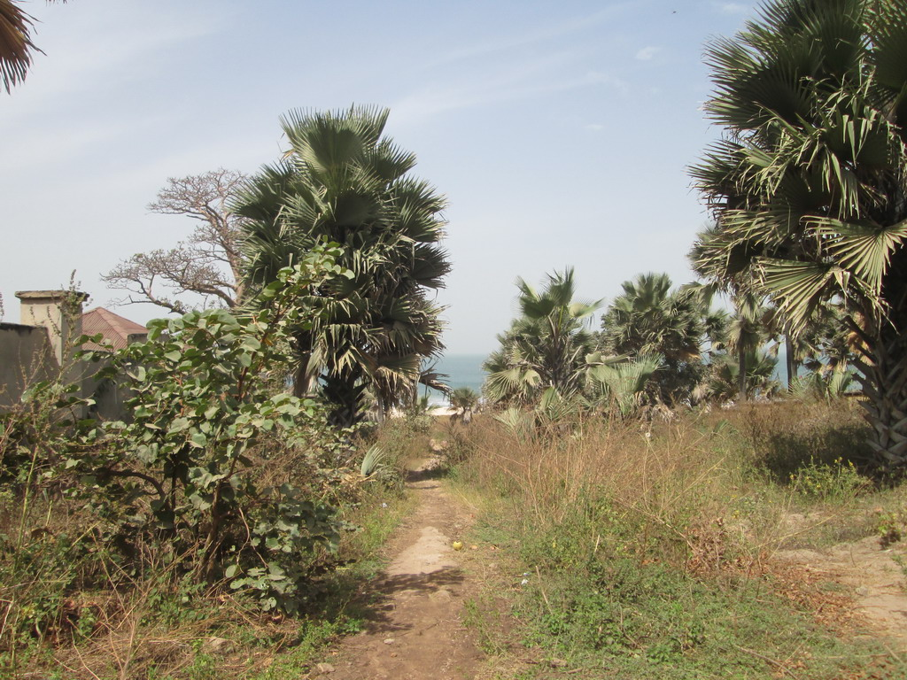 Urlaub Gambia 2016 45ixbhet
