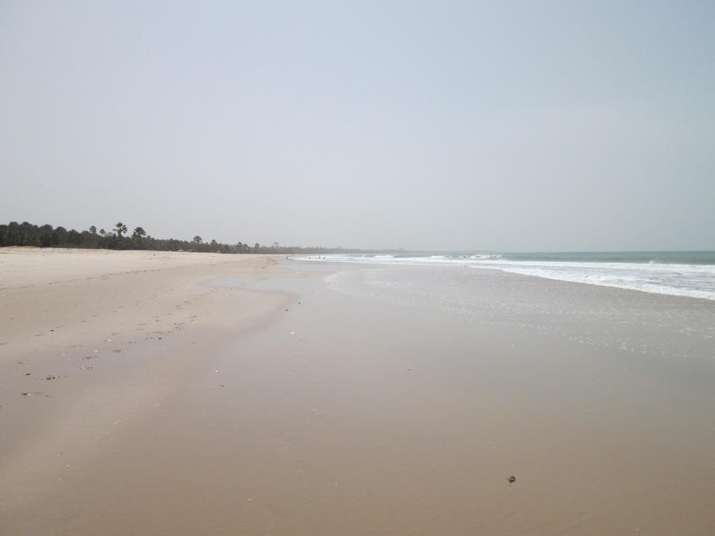 Urlaub Gambia 2016 - Seite 6 63vearix