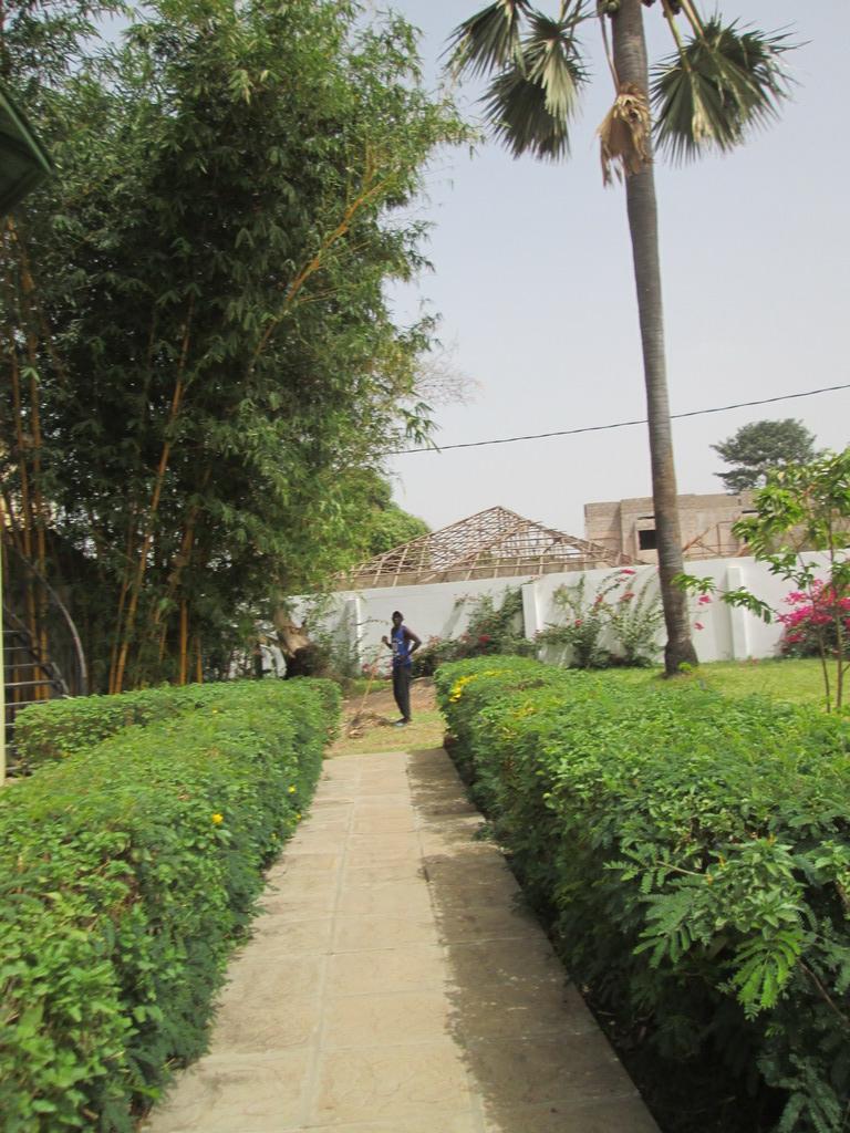 Urlaub Gambia 2016 - Seite 6 Mjqjbgc9