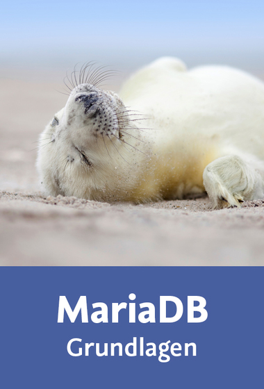 download Video2Brain.MariaDB.Grundlagen.GERMAN-PANTHEON