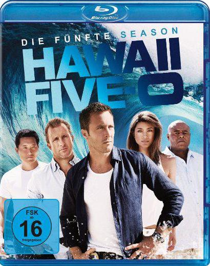 download Hawaii.Five-0.S01.-.S06.COMPLETE.GERMAN.5.1.DL.AC3.720p.BDRiP.x264-TvR