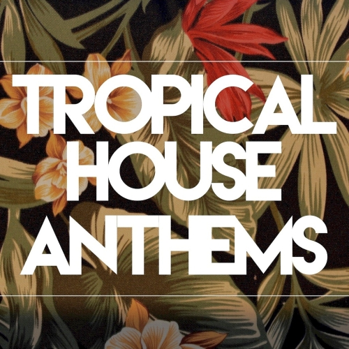 Tropical house anthems 2016 boerse sx boerse bz for Funky house anthems