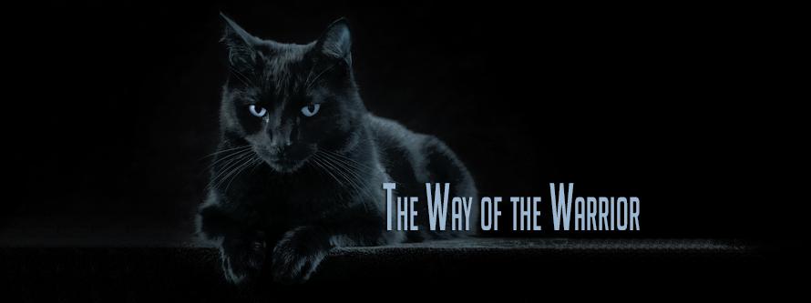 Der Weg der Kriegerkatzen