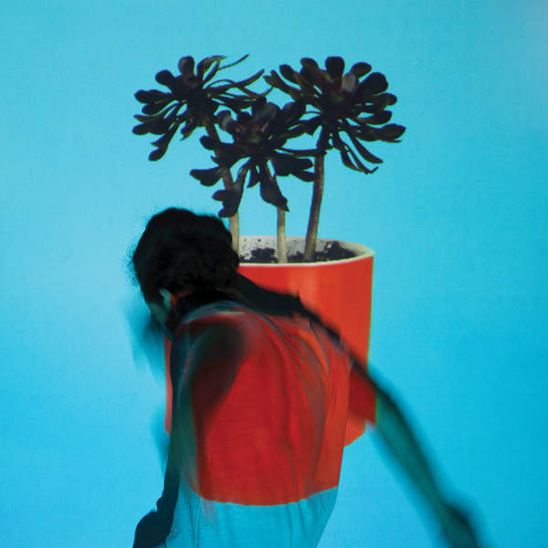 Local Natives - Sunlit Youth (2016)