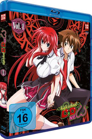 download High.School.DxD.New.S02.COMPLETE.GERMAN.DL.AC3.ANIME.1080p.BDRiP.x264-TvR