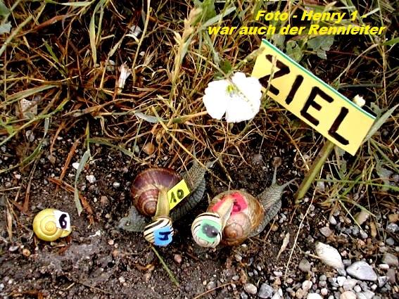 An den Beitrag angeh�ngtes Bild: http://fs5.directupload.net/images/160713/5dheqawe.jpg