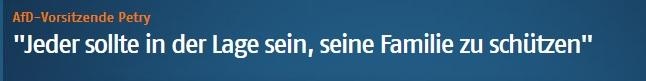 http://www.n24.de/n24/Mediathek/videos/d/9017456/-jeder-sollte-in-der-lage-sein--seine-familie-zu-schuetzen-.html