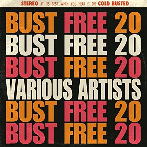VA - Bust Free 20 (2016)