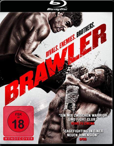 : Brawler 2011 German dl 1080p BluRay x264 iFPD