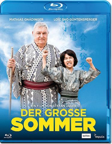 : Der Grosse Sommer 2016 Swissgerman 1080p BluRay x264 etm