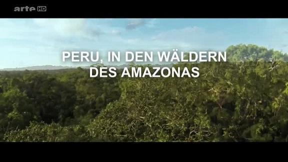 : Peru In den Waeldern des Amazonas German doku 720p WebHD x264 TeePfau