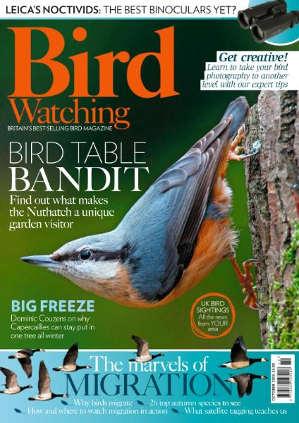 : Bird Watching Uk - October 2016