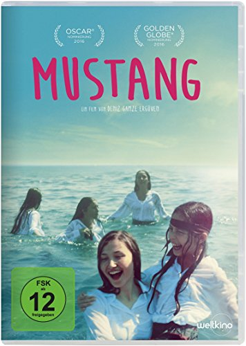 : Mustang German 2015 Ac3 BdriP x264 - Xf