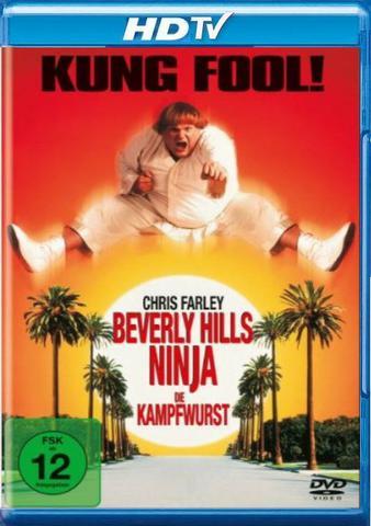 : Beverly Hills Ninja Die Kampfwurst 1997 German 720p hdtv x264 TiPToP