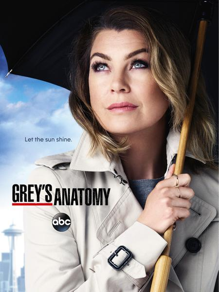 : Greys Anatomy s12e24 Familienangelegenheit german dubbed dl 720p WebHD h264 euHD