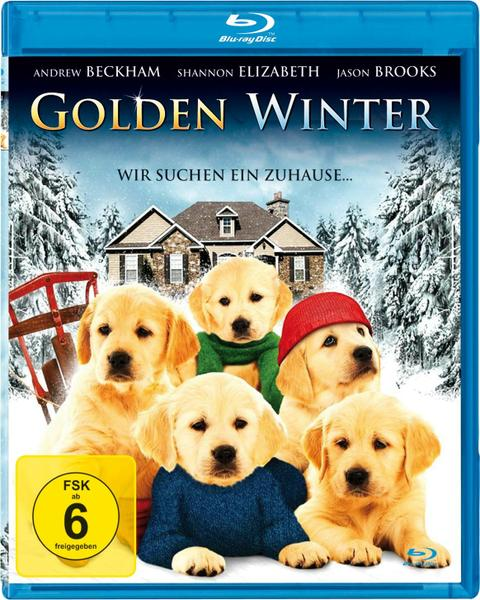 : Golden Winter German 2012 ac3 BDRiP XViD ambassador