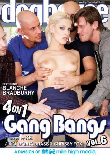 4 On 1 Gang Bangs 6 1080P Cover