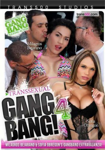 Transsexual Gangbang 4 Cover