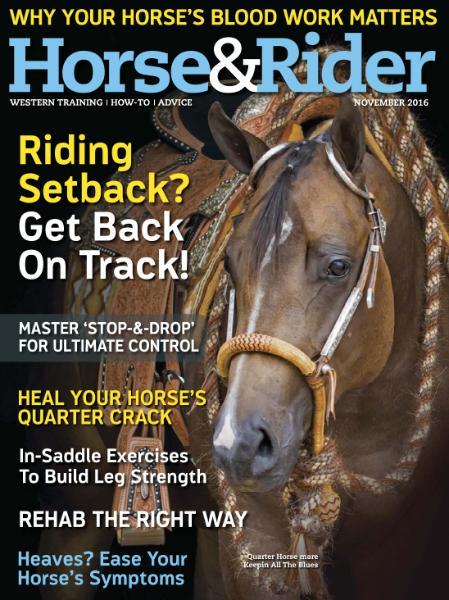: Horse Rider Usa - November 2016