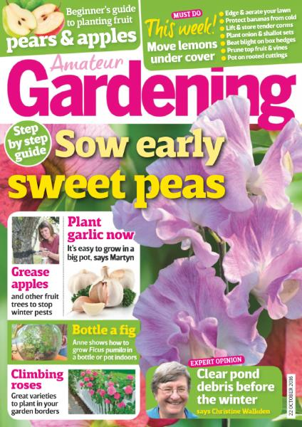 : Amateur Gardening - 22 October 2016
