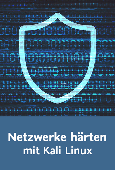 download Video2Brain.Netzwerke.haerten.mit.Kali.Linux.GERMAN-EMERGE