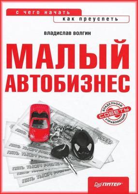 Владислав Волгин - Малый автобизнес: с чего начать, как преуспеть