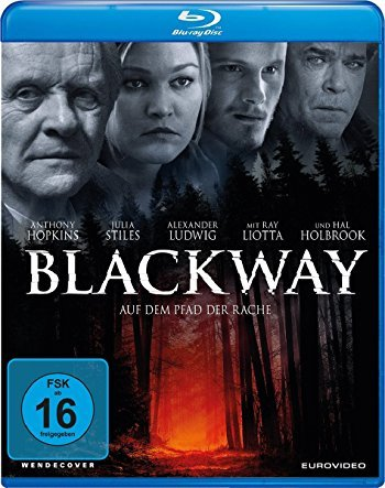 Blackway.Auf.dem.Pfad.der.Rache.2015.German.BDRip.AC3.XViD-CiNEDOME