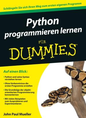 Python programmie ren lernen für Dummies