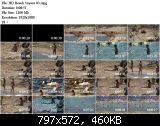 http://fs5.directupload.net/images/161128/temp/6aqavd33.jpg