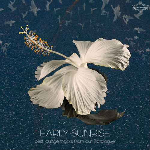 Early Sunrise (2016)