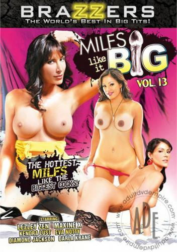 MILFS Like It Big 13 Cover