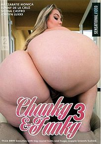 Chunky And Funky 3 Cover