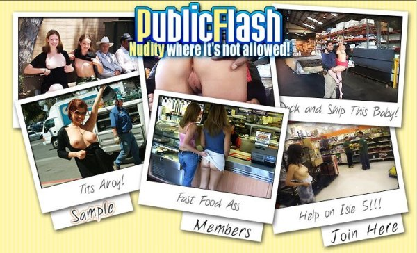 Public Flash - Siterip Cover