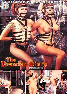 The Dresden Diary 19 Cover