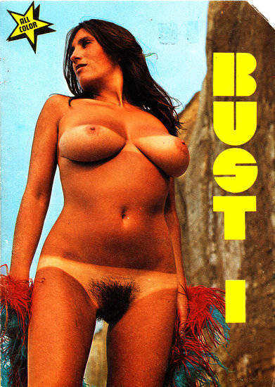 Bust 1 Cover
