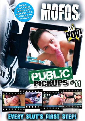 Public Pickups 11 Cover