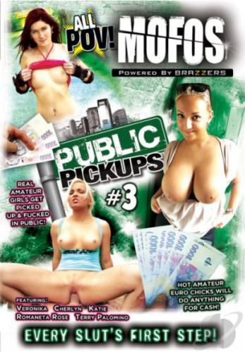 Public Pickups 3 Cover