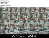 http://fs5.directupload.net/images/170122/temp/h5qywsx9.jpg