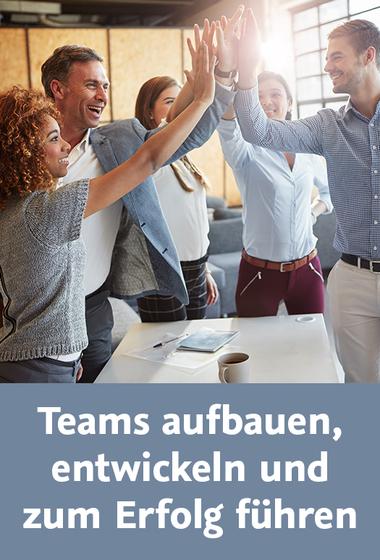 download Video2Brain.Teams.aufbauen.entwickeln.und.zum.Erfolg.fuehren.GERMAN-EMERGE